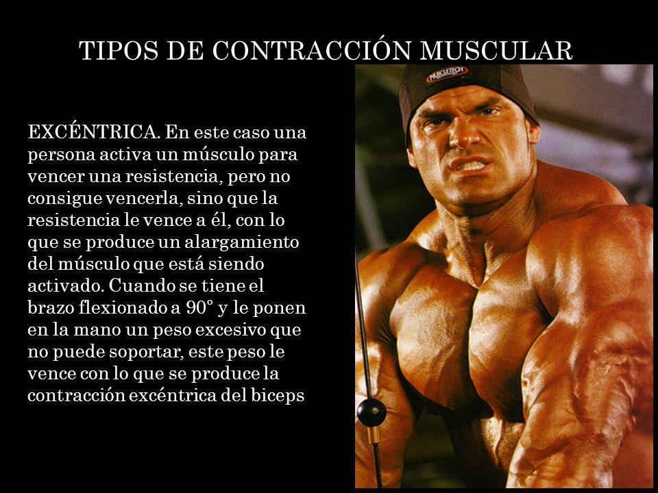 TIPOS DE CONTRACCIÓN MUSCULAR EXCÉNTRICA. En este caso una persona activa un músculo para vencer una resistencia, pero no consigue vencerla, sino que