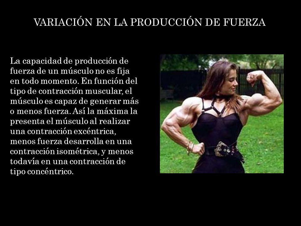 VARIACIÓN EN LA PRODUCCIÓN DE FUERZA En el caso de las contracciones de tipo excéntrico, un músculo es capaz de generar tanto más fuerza, cuanto más rápido sea el movimiento; es decir, a mayor velocidad, mayor fuerza de contracción excéntrica