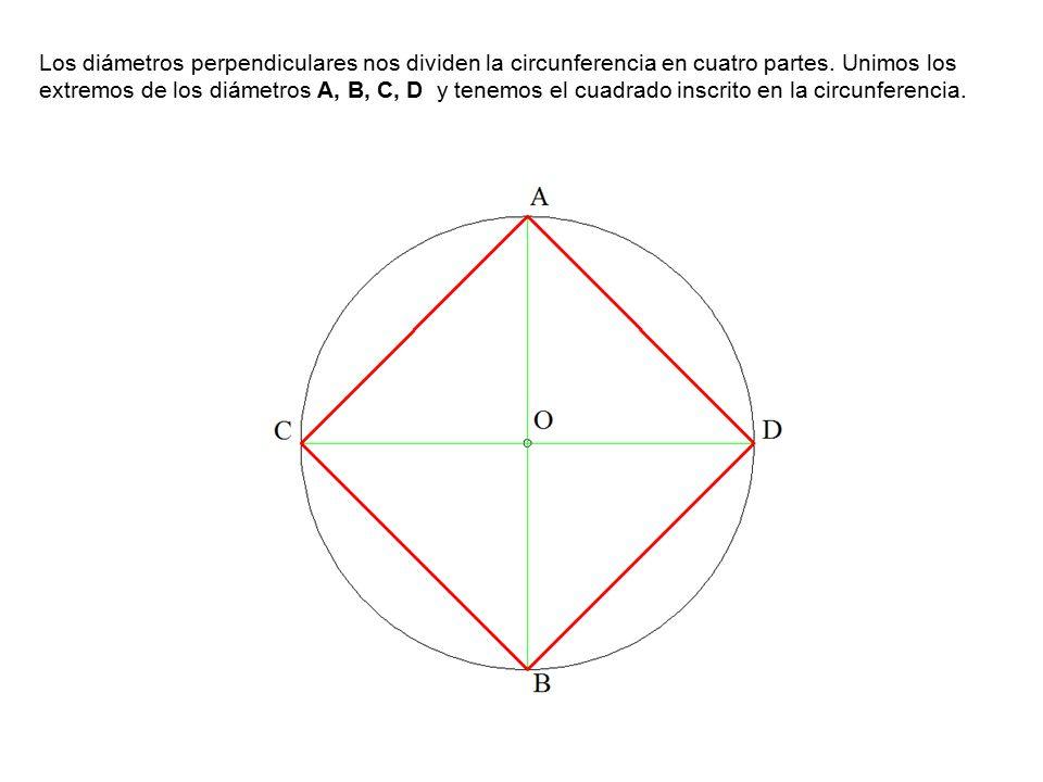 Los diámetros perpendiculares nos dividen la circunferencia en cuatro partes.