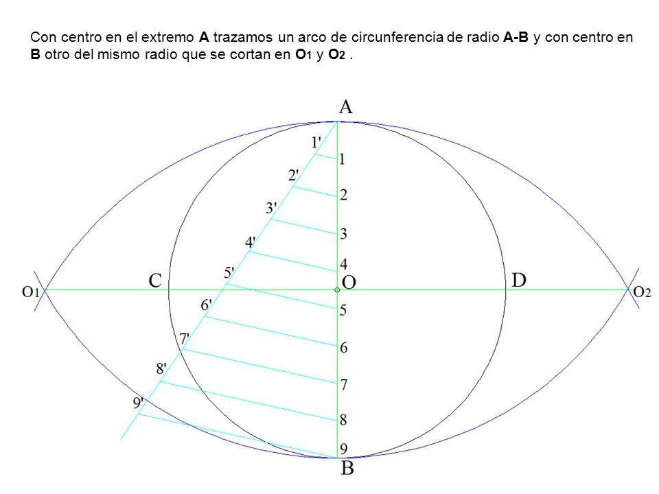 Con centro en el extremo A trazamos un arco de circunferencia de radio A-B y con centro en B otro del mismo radio que se cortan en O 1 y O 2.