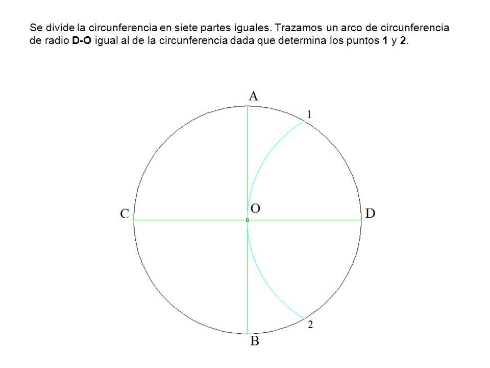 Se divide la circunferencia en siete partes iguales.