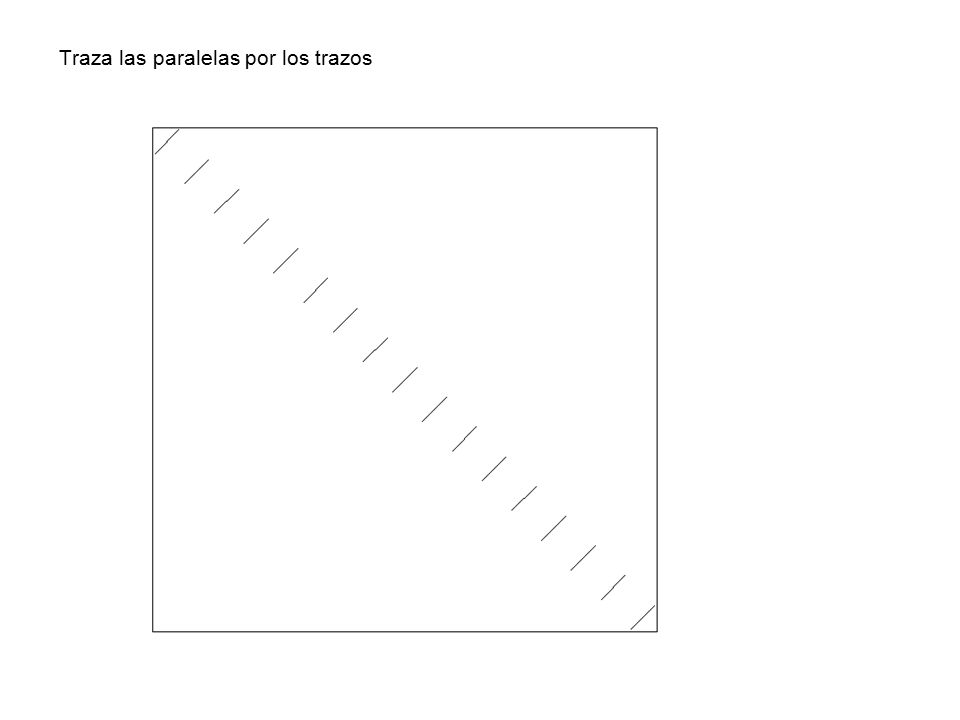 Traza las paralelas por los trazos