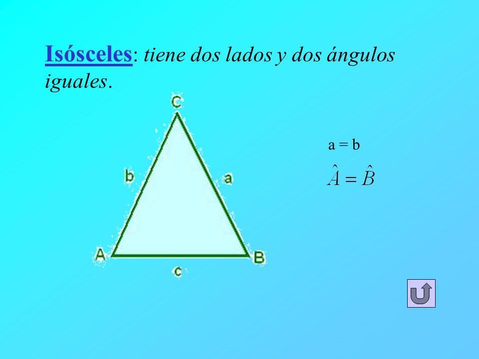 Isósceles : tiene dos lados y dos ángulos iguales. a = b
