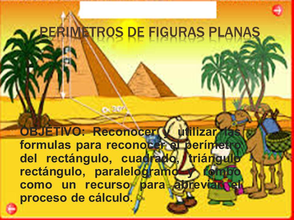  OBJETIVO: Reconocer y utilizar las formulas para reconocer el perímetro del rectángulo, cuadrado, triángulo rectángulo, paralelogramo y rombo como un recurso para abreviar el proceso de cálculo.