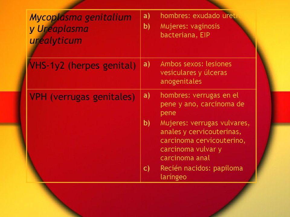 Mycoplasma genitalium y Ureaplasma urealyticum a)hombres: exudado uretral b)Mujeres: vaginosis bacteriana, EIP VHS-1y2 (herpes genital) a)Ambos sexos: lesiones vesiculares y úlceras anogenitales VPH (verrugas genitales) a)hombres: verrugas en el pene y ano, carcinoma de pene b)Mujeres: verrugas vulvares, anales y cervicouterinas, carcinoma cervicouterino, carcinoma vulvar y carcinoma anal c)Recién nacidos: papiloma laríngeo