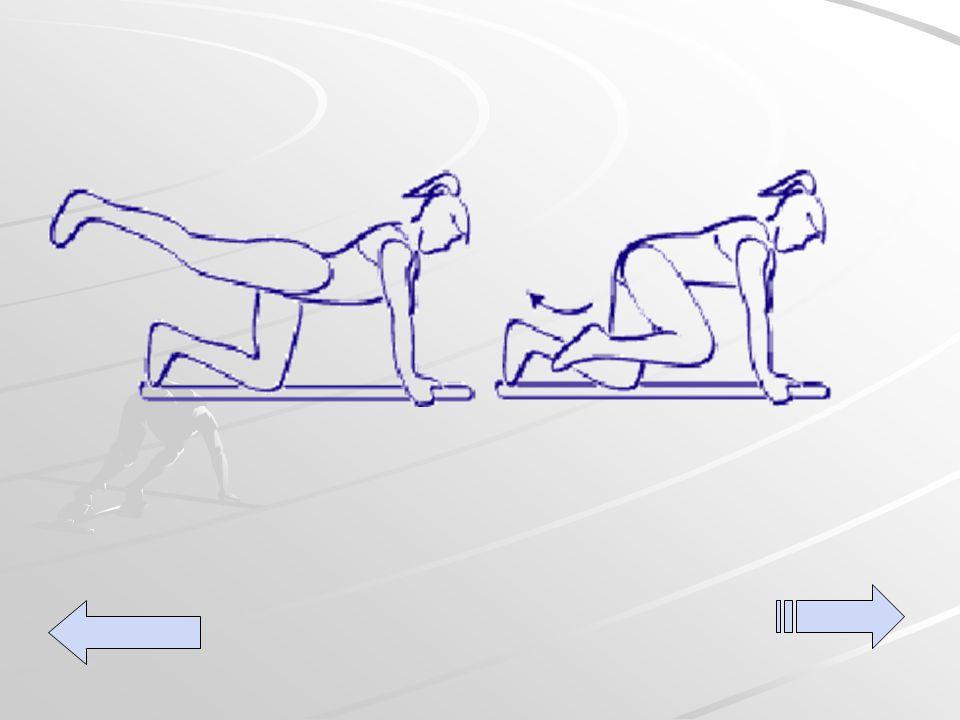Legs extension Ponga sus rodillas y manos en el suelo, luego extienda una pierna hacia atrás ejerciendo resistencia al movimiento natural.