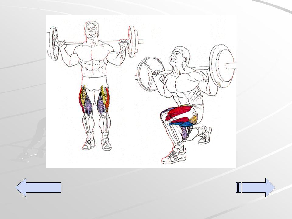 Single leg lunge (con barra) De pie, con los pies mirando hacia fuera y separados más o menos a la anchura de los hombros, coge una barra y colócala tras el cuello apoyándola en la parte superior de los trapecios.