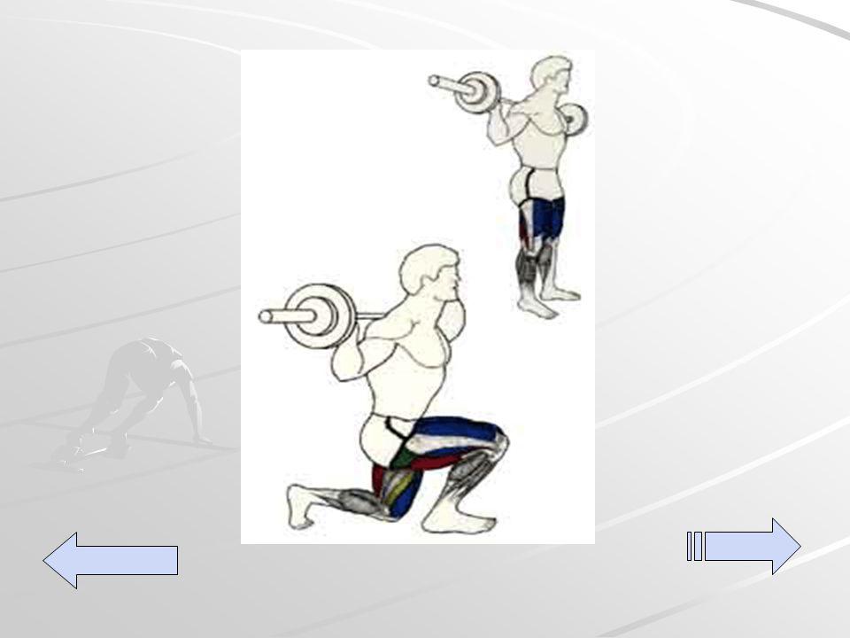 Estocadas: De pie, con los pies separados y paralelos, con la barra sobre los hombros y sujeta con las manos a los costados de los hombros.