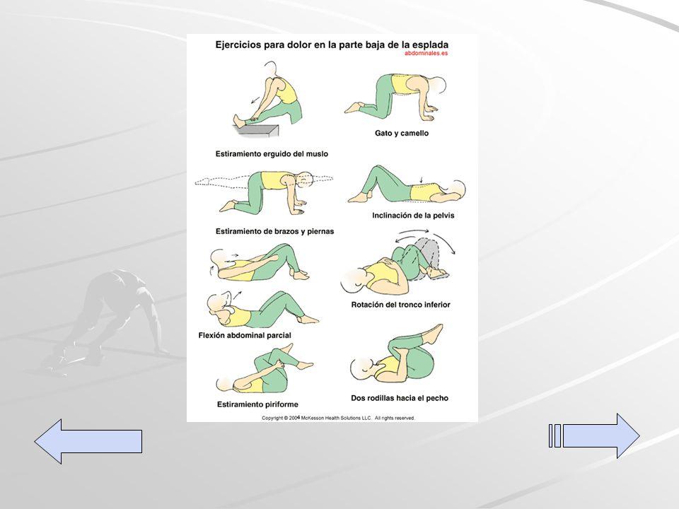 Ejercicios para la Espalda Ejercicios para la Espalda
