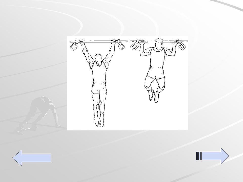 Pull up's Utilizando una barra, levanta las manos sobre su cabeza agarre la barra colocando la cabeza por delante de la barra hale hacia arriba hasta el limite, luego descienda extendiendo los brazos lo mas que pueda.