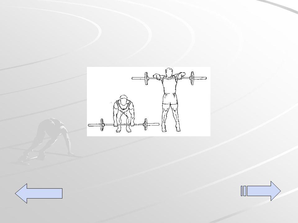 Full back pull's Utilizando una barra colóquese al pie de la barra agarre la misma colocando ambas muñecas hacia el frente de la barra levante el peso elevando la misma a la altura de la barbilla, realice tres series de 15 repeticiones.