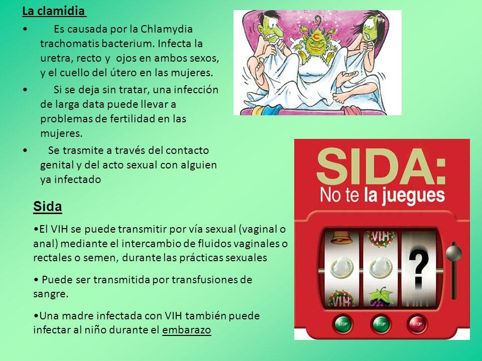 La clamidia Es causada por la Chlamydia trachomatis bacterium.