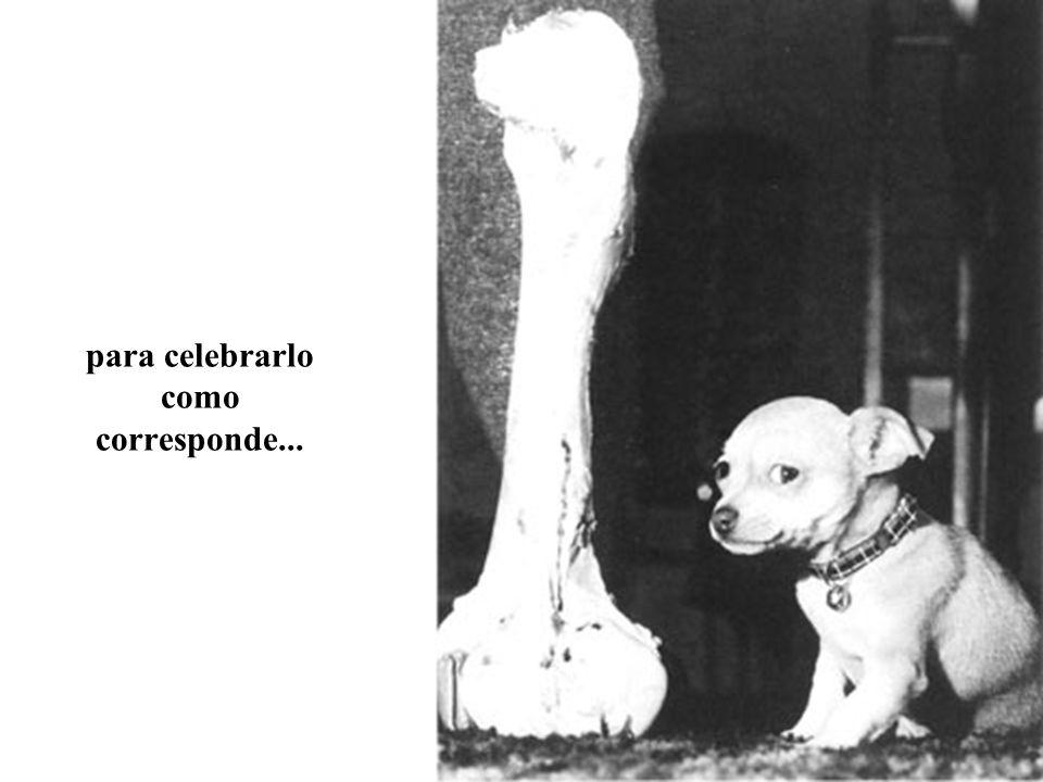 para celebrarlo como corresponde...