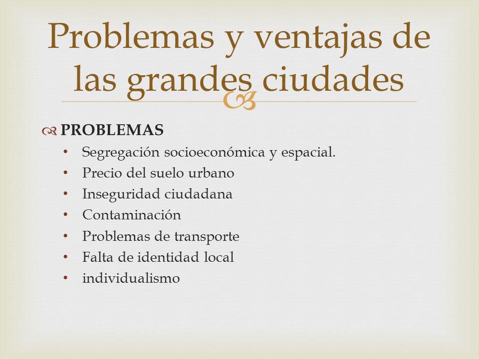   PROBLEMAS Segregación socioeconómica y espacial. Precio del suelo urbano Inseguridad ciudadana Contaminación Problemas de transporte Falta de iden