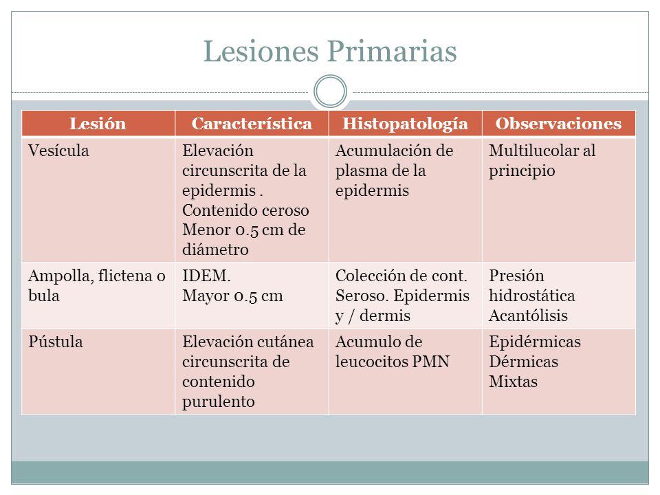 Lesiones Primarias LesiónCaracterísticaHistopatologíaObservaciones VesículaElevación circunscrita de la epidermis. Contenido ceroso Menor 0.5 cm de di