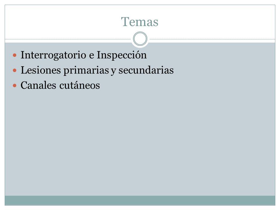 Temas Interrogatorio e Inspección Lesiones primarias y secundarias Canales cutáneos
