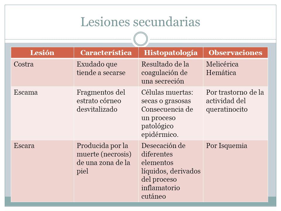 Lesiones secundarias LesiónCaracterísticaHistopatologíaObservaciones CostraExudado que tiende a secarse Resultado de la coagulación de una secreción M