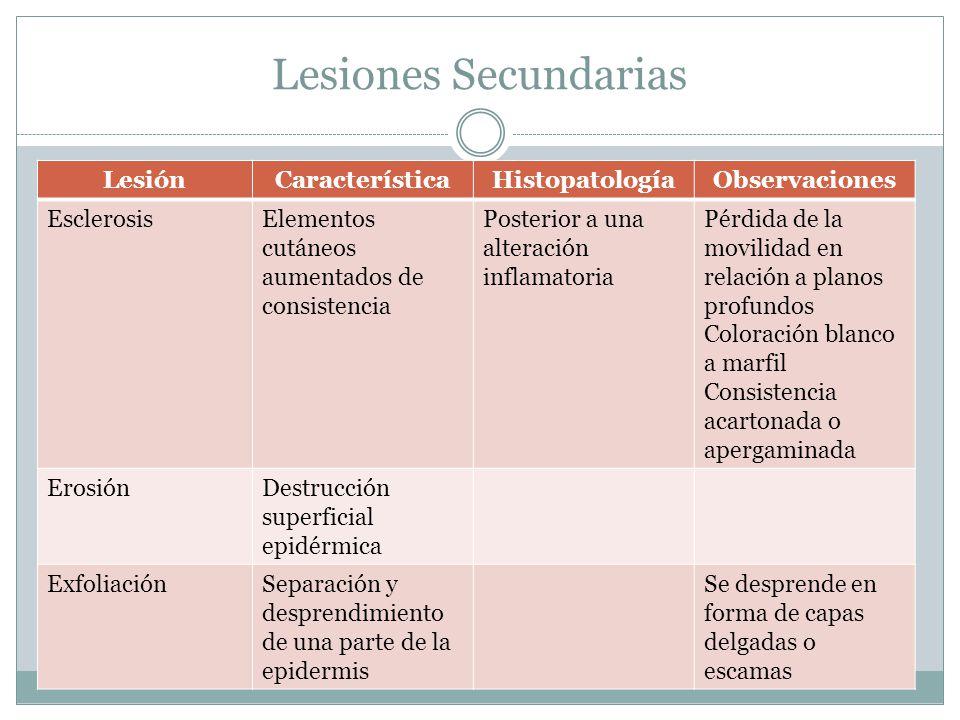 Lesiones Secundarias LesiónCaracterísticaHistopatologíaObservaciones EsclerosisElementos cutáneos aumentados de consistencia Posterior a una alteració
