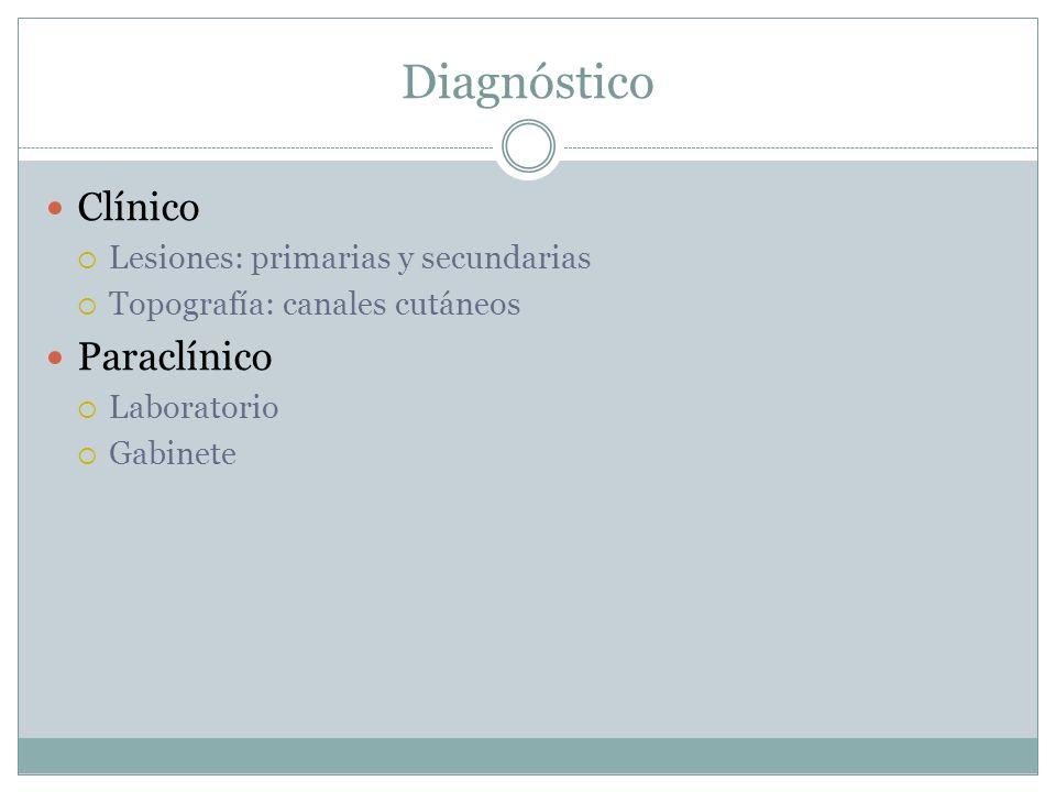 Diagnóstico Clínico  Lesiones: primarias y secundarias  Topografía: canales cutáneos Paraclínico  Laboratorio  Gabinete