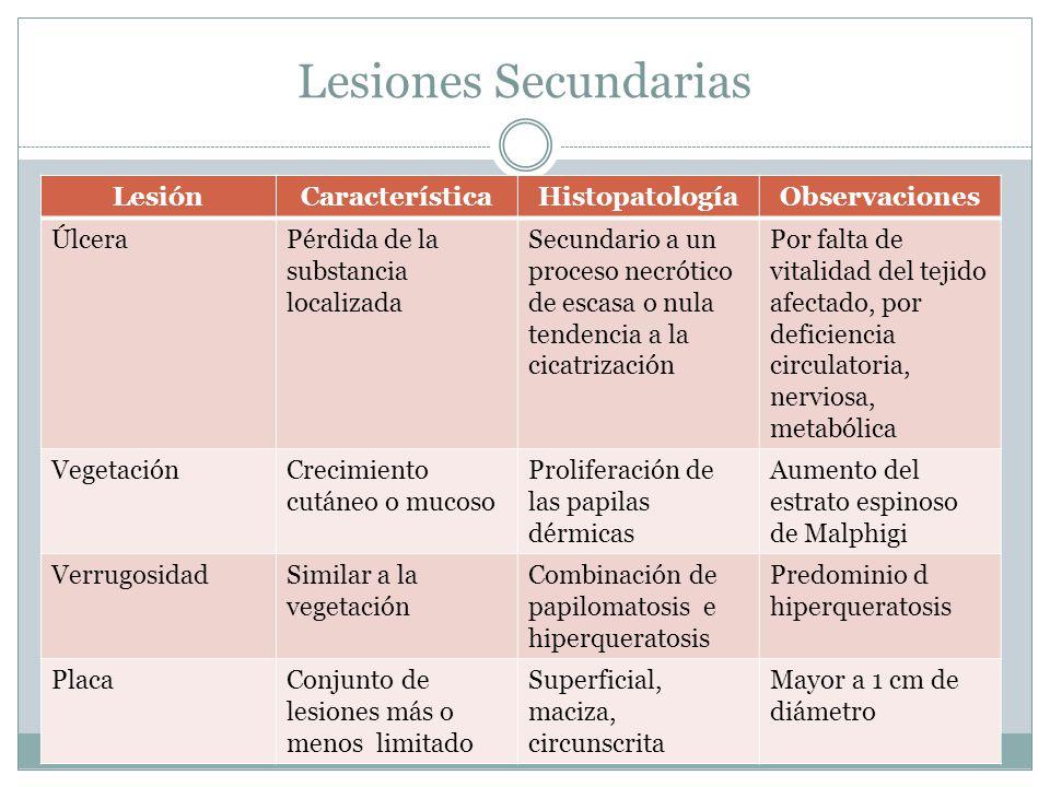 Lesiones Secundarias LesiónCaracterísticaHistopatologíaObservaciones ÚlceraPérdida de la substancia localizada Secundario a un proceso necrótico de es
