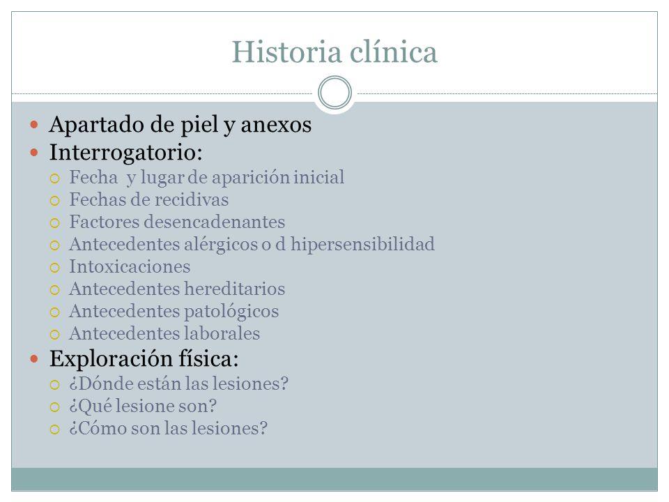 Historia clínica Apartado de piel y anexos Interrogatorio:  Fecha y lugar de aparición inicial  Fechas de recidivas  Factores desencadenantes  Ant