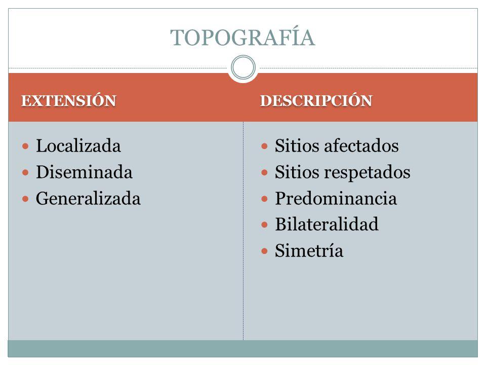 EXTENSIÓN DESCRIPCIÓN Localizada Diseminada Generalizada Sitios afectados Sitios respetados Predominancia Bilateralidad Simetría TOPOGRAFÍA