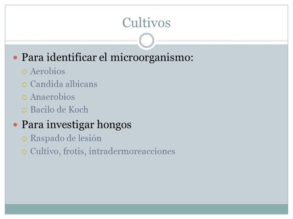 Cultivos Para identificar el microorganismo:  Aerobios  Candida albicans  Anaerobios  Bacilo de Koch Para investigar hongos  Raspado de lesión 