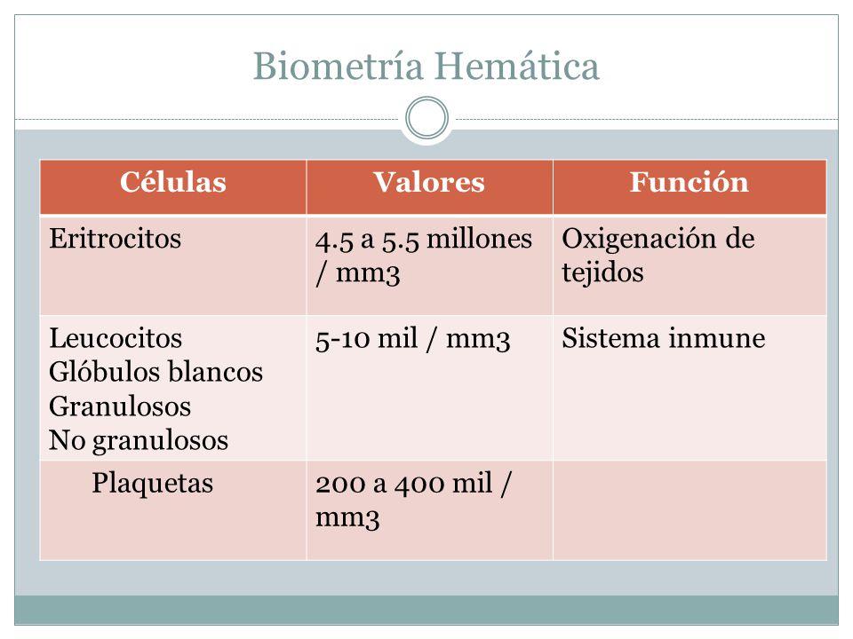 Biometría Hemática CélulasValoresFunción Eritrocitos4.5 a 5.5 millones / mm3 Oxigenación de tejidos Leucocitos Glóbulos blancos Granulosos No granulosos 5-10 mil / mm3Sistema inmune Plaquetas200 a 400 mil / mm3