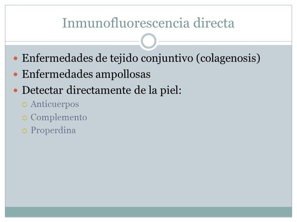 Inmunofluorescencia directa Enfermedades de tejido conjuntivo (colagenosis) Enfermedades ampollosas Detectar directamente de la piel:  Anticuerpos  Complemento  Properdina