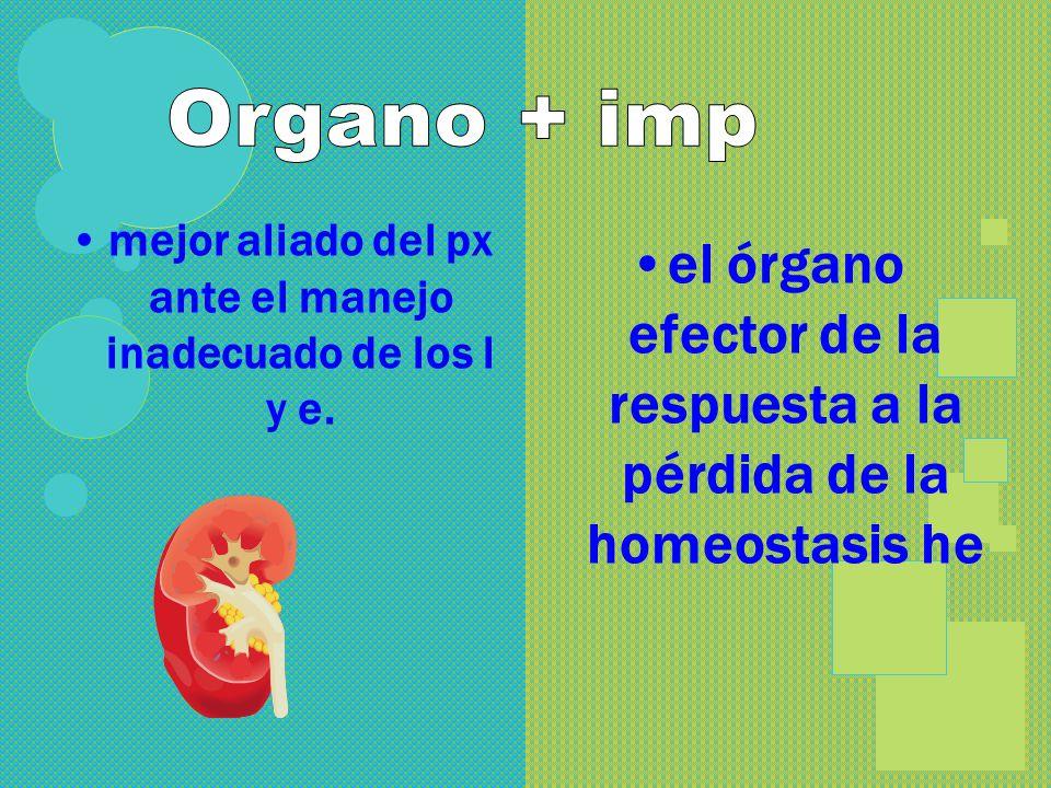 Líquidos ingeridos 3 1 Catabolismo tisular 2 1 4 2 3 Agua de los alimentos Estómago Intestinos Intestino grueso Riñón Pulmones Piel Vaso sanguíneo FUE
