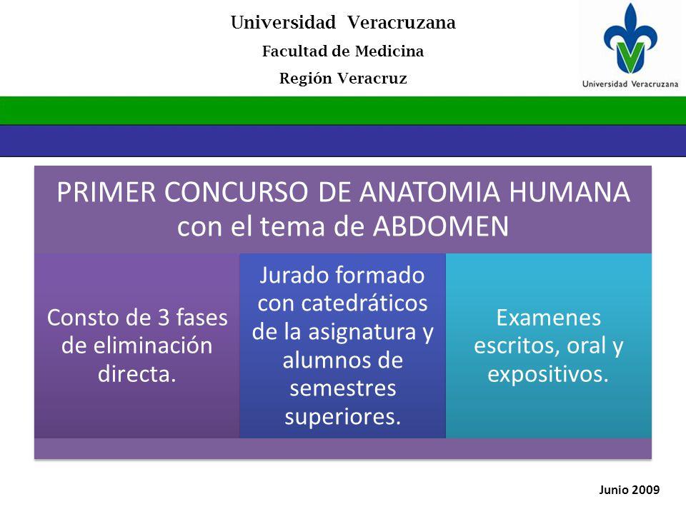 Moderno Anatomía De Un Jurado Fotos - Imágenes de Anatomía Humana ...