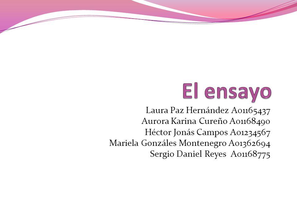 Laura Paz Hernández A01165437 Aurora Karina Cureño A01168490 Héctor Jonás Campos A01234567 Mariela Gonzáles Montenegro A01362694 Sergio Daniel Reyes A01168775