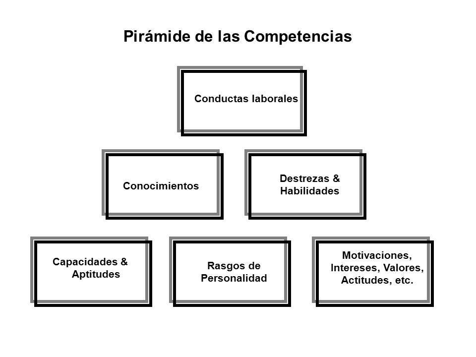 CONOCIMIENTOS Son conjuntos de informaciones que adquirimos vía educación formal y capacitación.