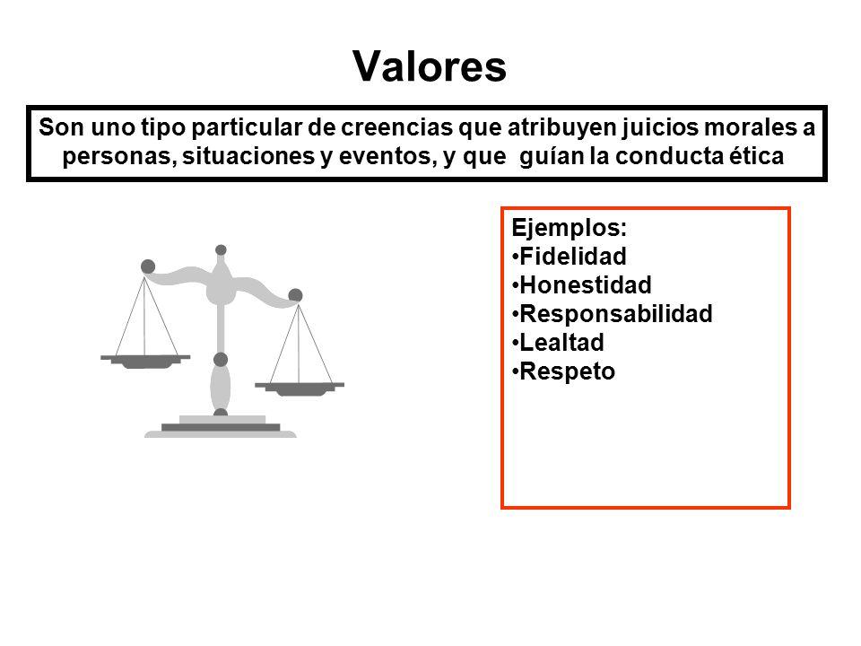 Los valores son competencias transversales; esto es, cualquier tipo de cargo o puesto requiere valores.