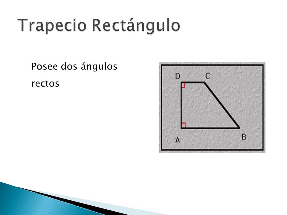  Tiene dos lados no paralelos congruentes.