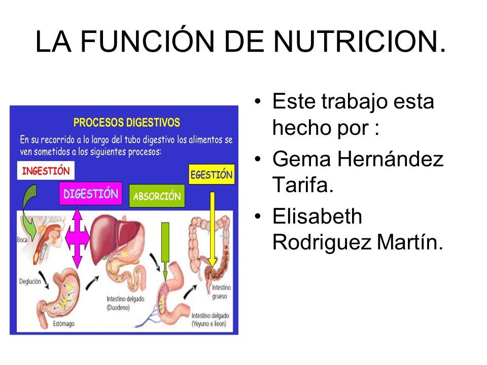 LA FUNCIÓN DE NUTRICION. Este trabajo esta hecho por : Gema Hernández Tarifa. Elisabeth Rodriguez Martín.
