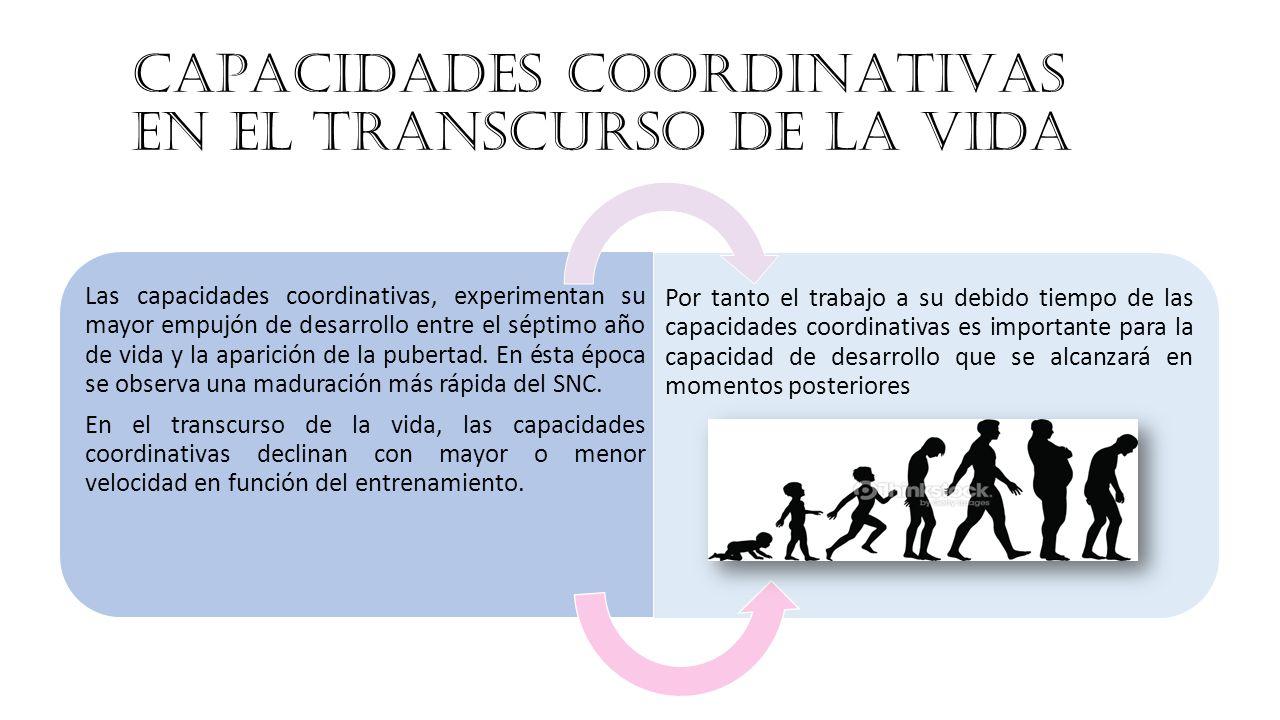 CAPACIDADES COORDINATIVAS EN EL TRANSCURSO DE LA VIDA Las capacidades coordinativas, experimentan su mayor empujón de desarrollo entre el séptimo año de vida y la aparición de la pubertad.