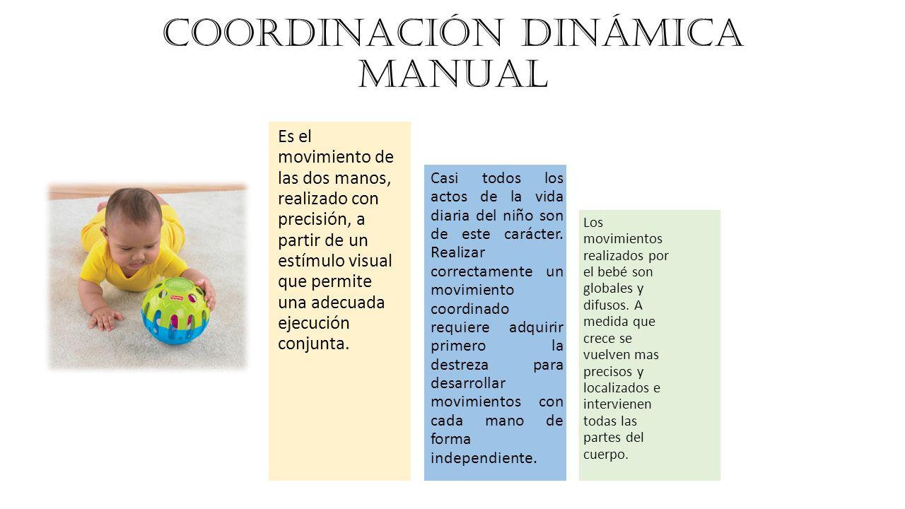 COORDINACIÓN DINÁMICA MANUAL Es el movimiento de las dos manos, realizado con precisión, a partir de un estímulo visual que permite una adecuada ejecución conjunta.