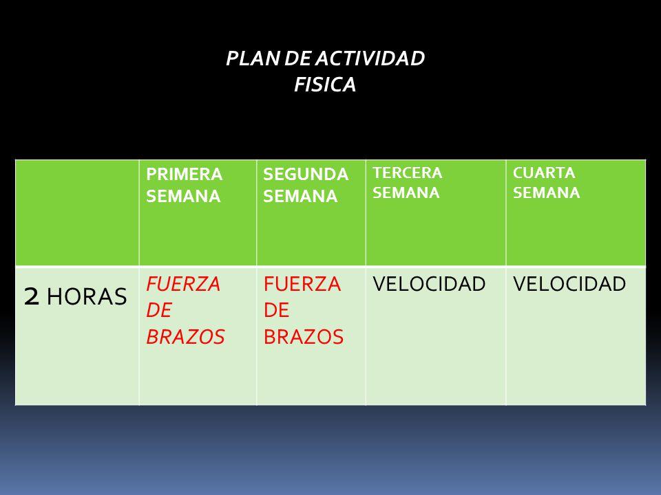 PRIMERA SEMANA SEGUNDA SEMANA TERCERA SEMANA CUARTA SEMANA 2 HORAS FUERZA DE BRAZOS VELOCIDAD PLAN DE ACTIVIDAD FISICA