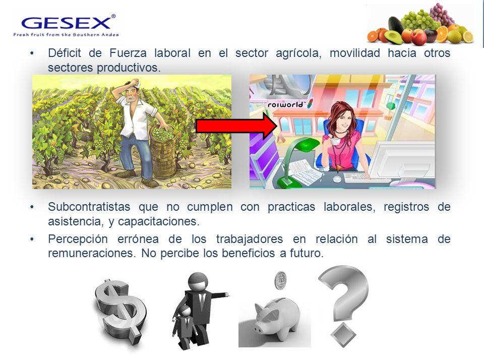 Déficit de Fuerza laboral en el sector agrícola, movilidad hacia otros sectores productivos.