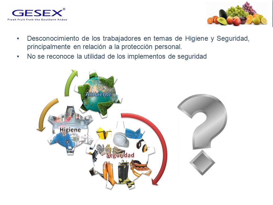Desconocimiento de los trabajadores en temas de Higiene y Seguridad, principalmente en relación a la protección personal.