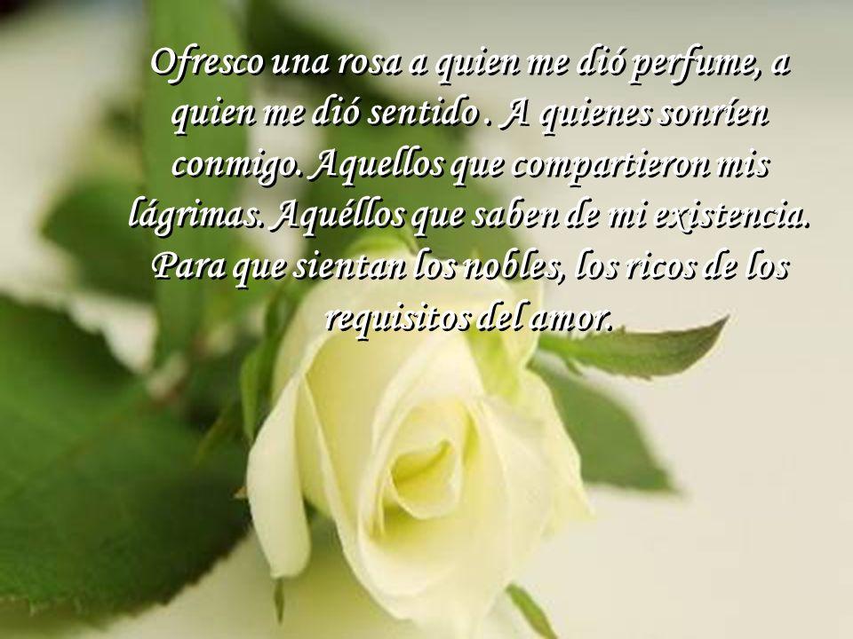 El ejemplo de la flor bastará para un cambio de mucho amor.