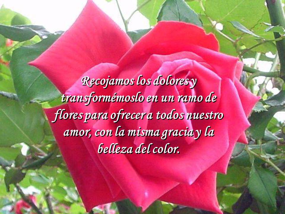 Si la tristeza recogida y dedicada a alguien significa amor.