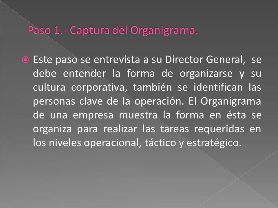 Director General Gerente General Gerente Operativo Encargado de Almacén Encargado de Ventas