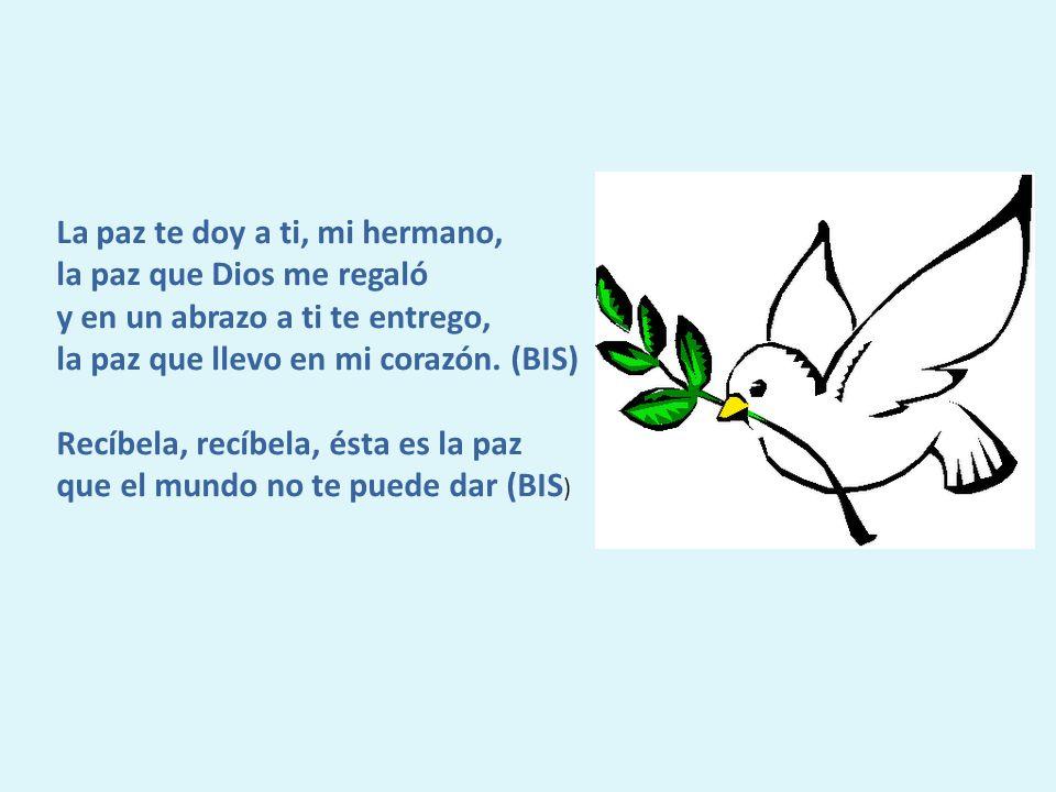 La paz te doy a ti, mi hermano, la paz que Dios me regaló y en un abrazo a ti te entrego, la paz que llevo en mi corazón.