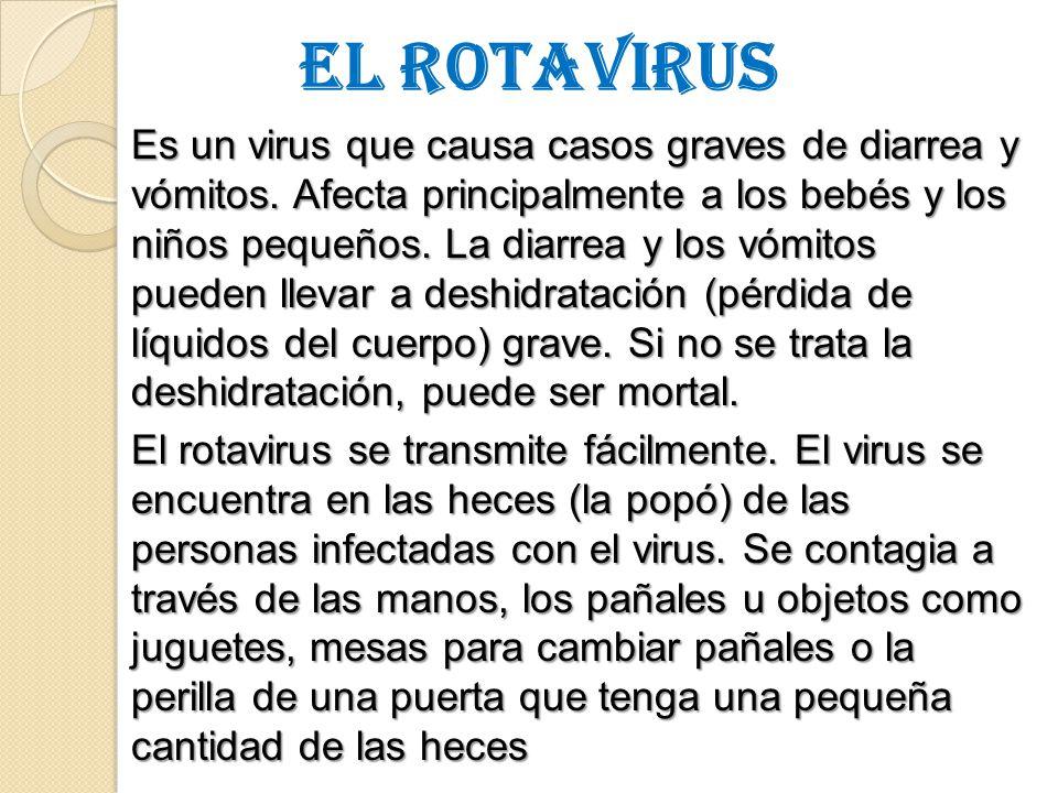 EL ROTAVIRUS Es un virus que causa casos graves de diarrea y vómitos.