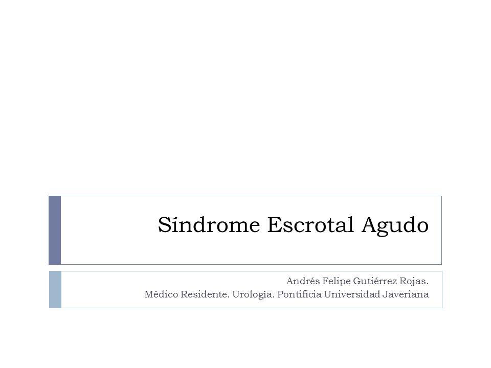 Síndrome Escrotal Agudo Andrés Felipe Gutiérrez Rojas. Médico Residente. Urología. Pontificia Universidad Javeriana