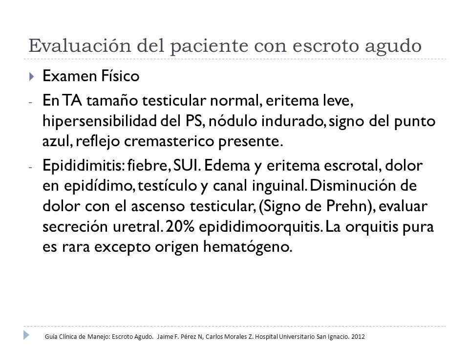Evaluación del paciente con escroto agudo  Examen Físico - En TA tamaño testicular normal, eritema leve, hipersensibilidad del PS, nódulo indurado, s