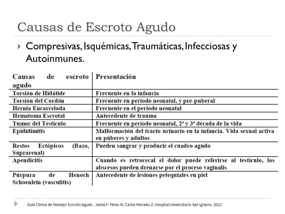 Causas de Escroto Agudo  Compresivas, Isquémicas, Traumáticas, Infecciosas y Autoinmunes. Guía Clínica de Manejo: Escroto Agudo. Jaime F. Pérez N, Ca