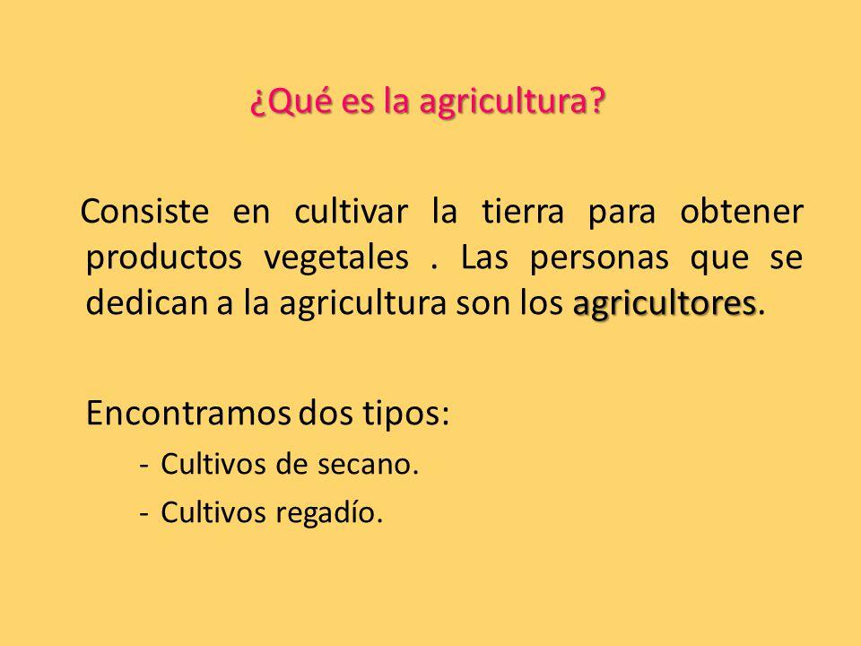 ¿Qué es la agricultura.